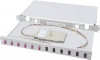Digitus Professional LWL-Patchpanel 6 Port LC DN-96330-4 1 HE